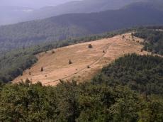 Mogielica Limanowa