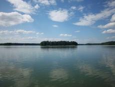 Rezerwat przyrody Wyspa Lipowa