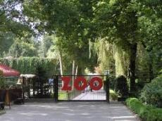 ZOO w Krakowie