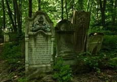 Cmentarz żydowski w Jarosławiu