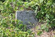 Cmentarz żydowski w Krasnymstawie