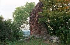 Ruiny zamku Wedlów w Drawnie
