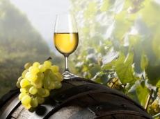 Dni Przyjaźni Polsko – Węgierskiej dzień 3 - Festiwalu wina i smaków węgierskich