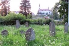 Cmentarz żydowski w Piwnicznej Zdroju