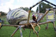 Park owadów w Stobiernej