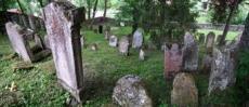 Cmentarz żydowski w Krynicy
