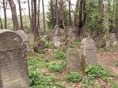 Cmentarz żydowski w Lesku