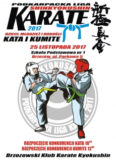 Podkarpacka Liga Shinkyokushin Karate