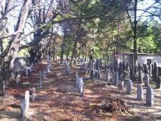 Cmentarz żydowski w Chrzanowie